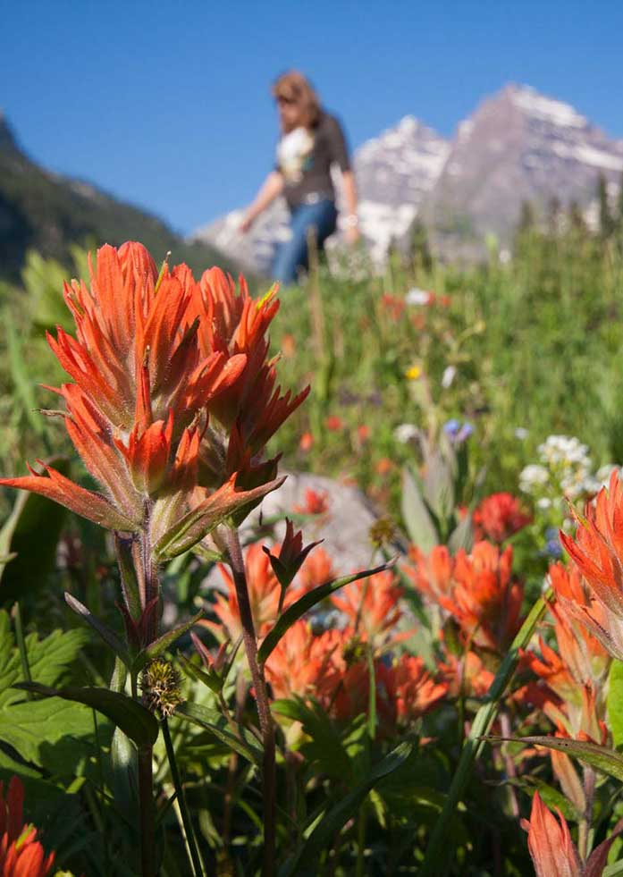 Hike the Maroon Bells area near Aspen - 5