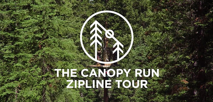 Video thumbnail of Canopy Run Zipline Tour at Lost Forest in Snowmass, Colorado