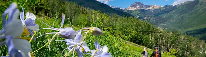 56e9d5679977 Spring Aspen Snowmass Cashback Sale ...