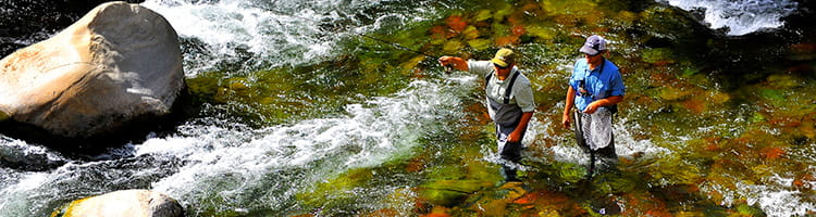 Private fly fishing guide Aspen Little Nell